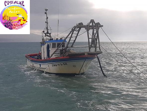 Métodos de pesca de la chirla en el litoral de Huelva